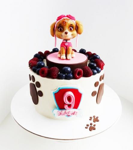 01-detskiy-tort-na-9-let-devochke
