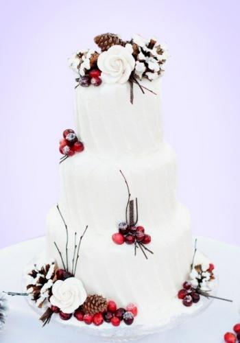 02-zimnij-svadebnyj-tort